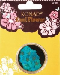 KONAD NAIL ART REAL FLOWER SKY BLUE SET